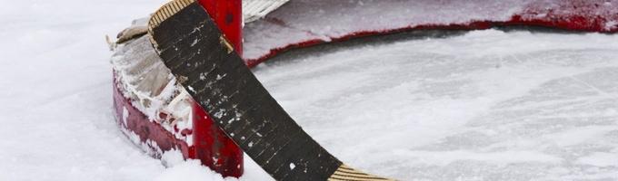 The Hockey Life